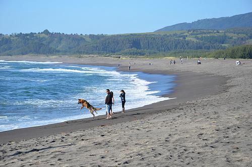 Playa de Buchupureo