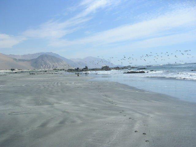 playa el aguila